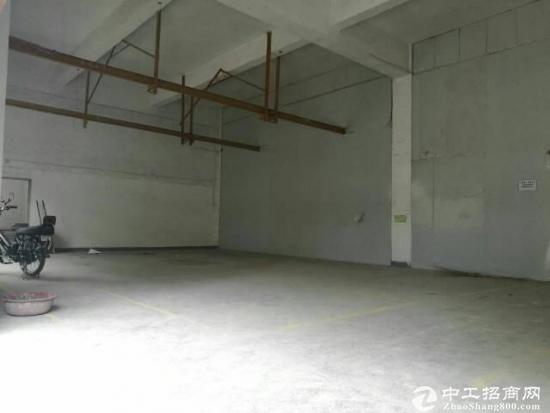 龙岗嶂背社区4800平独院厂房出租大小可分租-图3