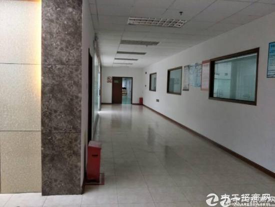 坪山带红本可做医疗厂房998平招租 享受补贴-图2