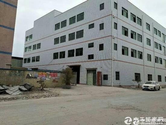 龙岗区独院厂房8900平米14元出租-图3