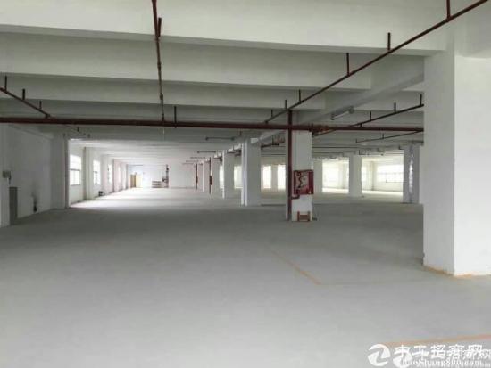 龙岗区独院厂房8900平米14元出租-图5