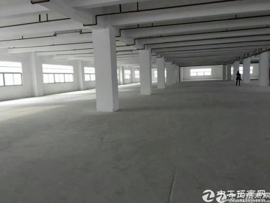 龙岗区独院厂房8900平米14元出租-图4