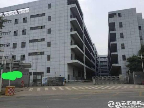 坪山金碧路旁标准原房东4楼2400平带装修-图2
