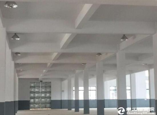 出租武汉周边团风县产业港13000平全新独栋厂房-图3