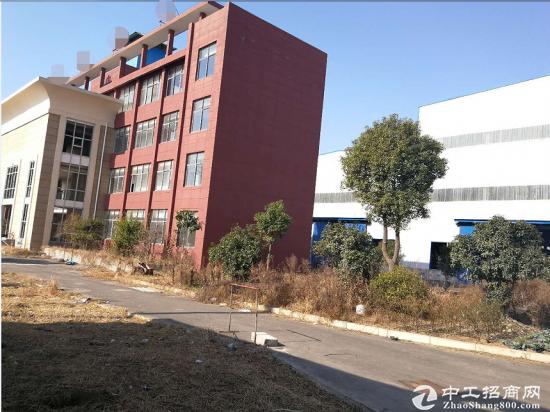 团风工业园新出20000平钢结构厂房招租 可分租-图2
