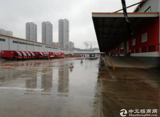 物流公司福音龙华梅观高速旁刚出8000平物流仓库,业主直租