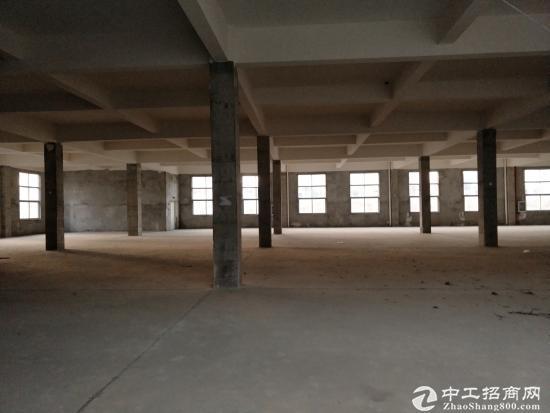 闽台工业园独栋3层厂房招租 8000平 可分租-图4