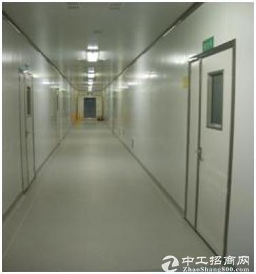 青岛高新区6000平生物科技公司对外转让出租(有完善实验室)