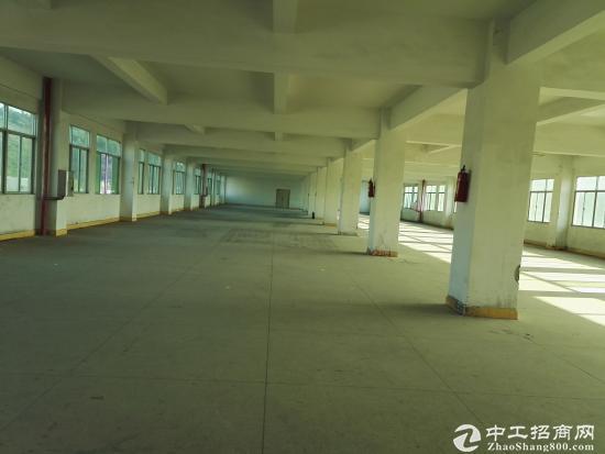 坪山 三洋湖工业区新出2楼整层2000平米标准厂房-图3