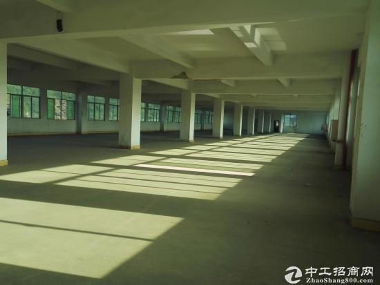 坪山 三洋湖工业区新出2楼整层2000平米标准厂房-图4