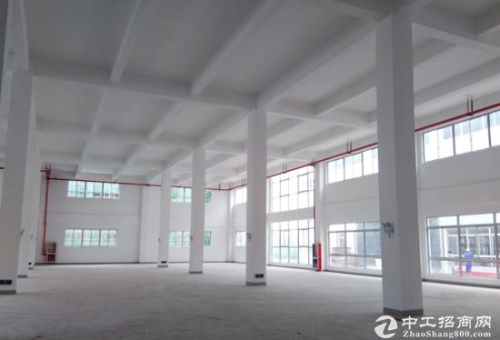 高新技术企业的福音 武汉新洲区全新园区厂房直租