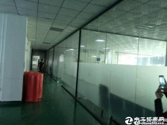 龙岗地铁站新出楼上1200平米精装修直租-图2