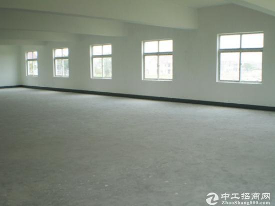 武汉新洲区双柳镇新出4000平标准厂房 带红本-图3