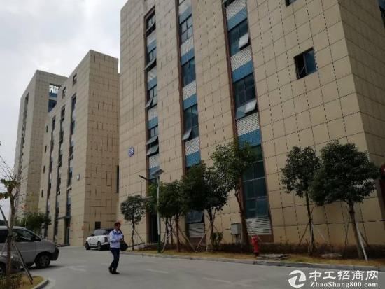 【厂房招租】武汉新洲区带红本厂房 5000平-图2