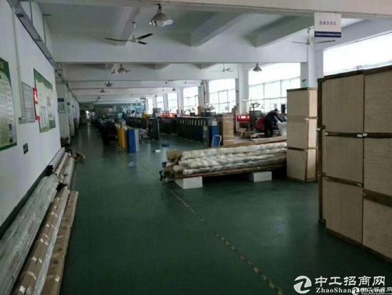 龙华清湖地铁口单层2100平共4200平,可分租-图6