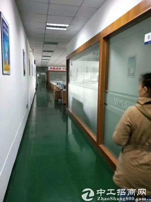 龙华清湖地铁口单层2100平共4200平,可分租-图3