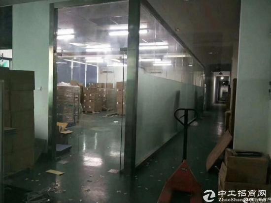 龙华清湖地铁口单层2100平共4200平,可分租-图14
