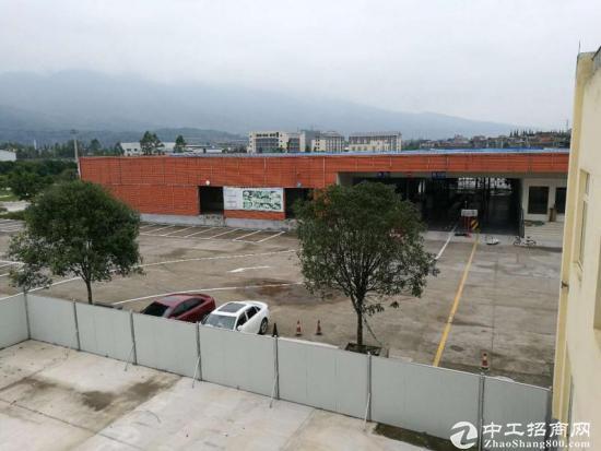 雅安草坝双证50亩产权厂房出售-图2