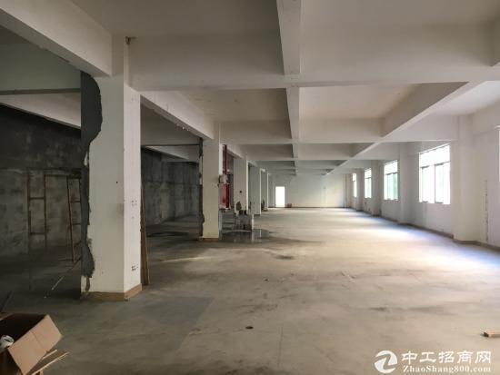 新出观澜新田公坑廊独院厂房招租-图5