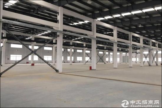 成都蒲江寿安镇单层钢构厂房出售 10000平 可分割-图2