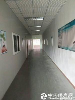 厚街新出莞太路旁2500方水电齐全,精装办公室