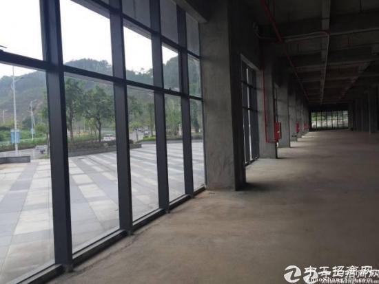 龙华红本厂房1楼2000平,五和大道旁新出科学院