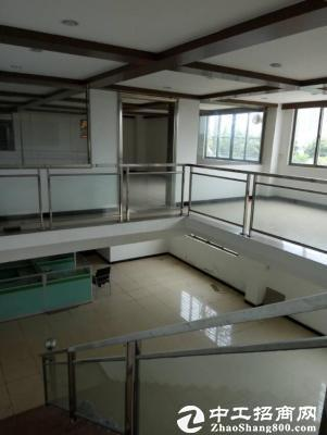 东莞书花园式厂房8100平方,租金实惠便宜 空地