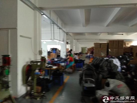 坪山六联社区宝山第四工业区标准厂房1楼350平招租-图3