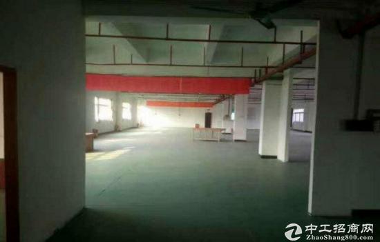 华南城超靓标准独院厂房出租9000平 形象佳位置好