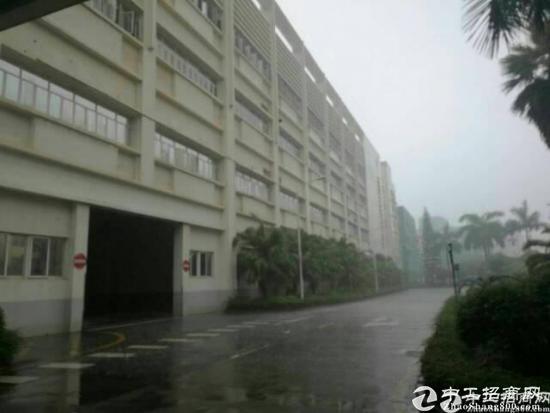 龙华清湖地铁口175平米带装修厂房-图2