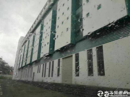 龙华清湖地铁口175平米带装修厂房