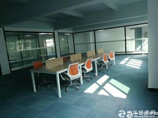 龙华高大上新出创客电商园招租120-240-480大小面积分租-图3