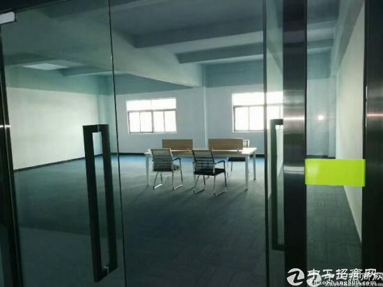 龙华高大上新出创客电商园招租120-240-480大小面积分租