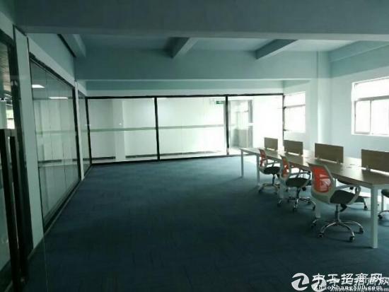 龙华高大上新出创客电商园招租120-240-480大小面积分租-图4