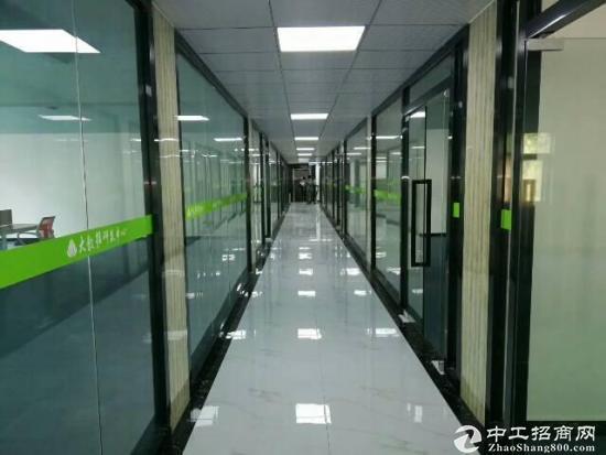 龙华高大上新出创客电商园招租120-240-480大小面积分租-图2