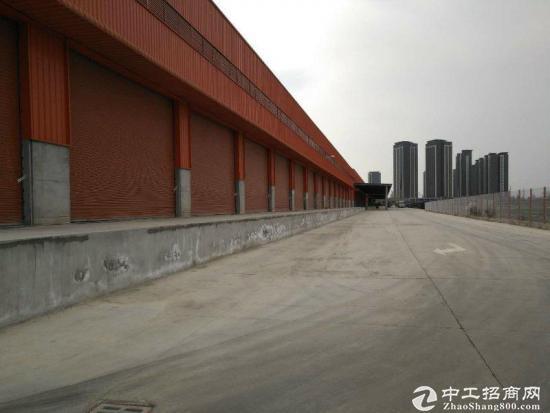 西部工业物流园80000平米多规格厂房出租-图2