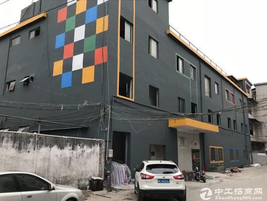 沙井107国道边上 全新3000 平方厂房出租