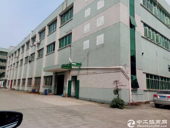 茶山镇一楼800平方标准厂房 招租