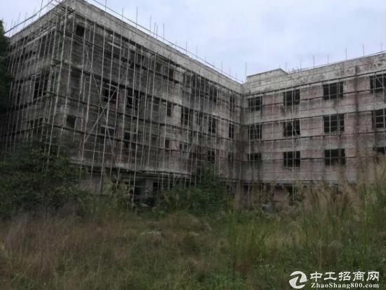 惠州博罗县出售占地2660,建筑3030