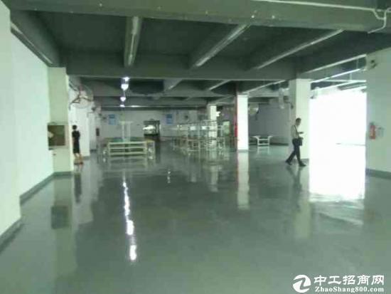 南城雅园独院厂房出租,两栋共10000平米,可分租