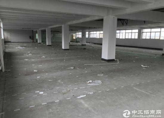 万江小享新出2楼标准厂房1350平米招租