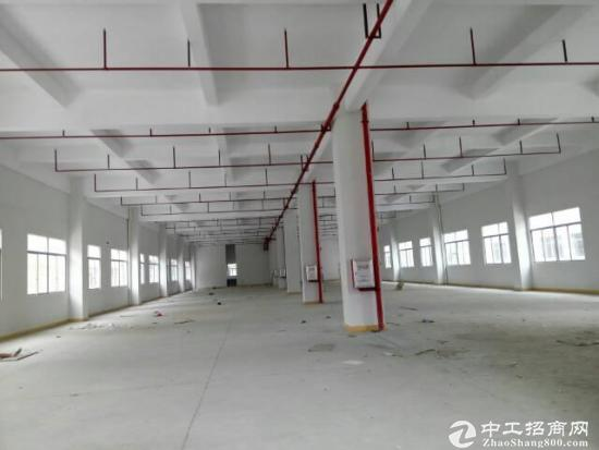 坪山大工业区楼上1800平招租 有红本可申请补贴