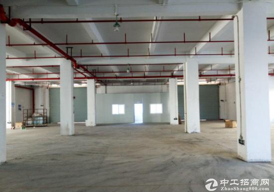 芦溪新出标准厂房一楼1500平空地大交通方便环境优美水电齐全