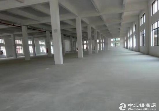万江小享标准一楼2400平厂房直租