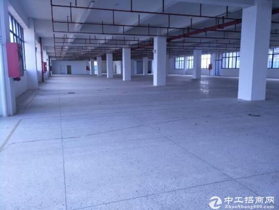 喜报坪山高速出口七万平工业园整体招租可分租