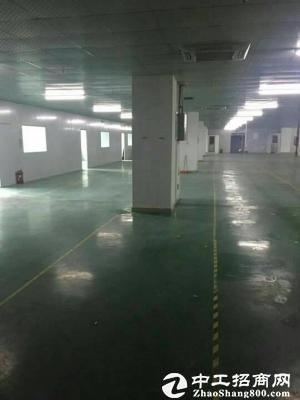 石岩龙大机荷高速出口边3000平方厂房招租