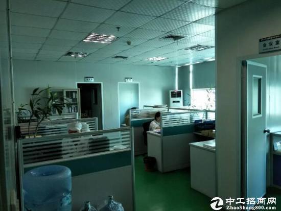 西丽白芒关口新出楼上900平米带装修厂房出租