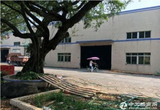 常平九江水原房东单一层厂房2500平招租