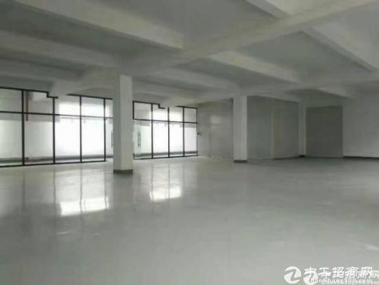 常平独门独院4000平标准厂房,可分租