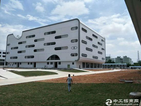 坪山 进出口加工区38000平米全新厂房出租可分