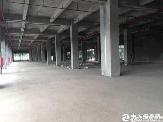 龙华红本厂房1楼2800平,五和大道旁新出科学院